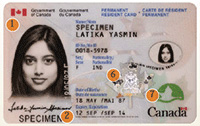 Canada PR Card - Maple Card